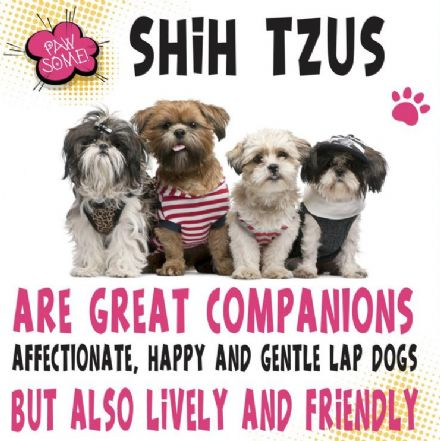 Shih Tzus Metal Wall Sign